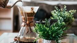 地表咖啡因含量最高!前美體小舖總經理,要賣「一匙就夠」超濃咖啡