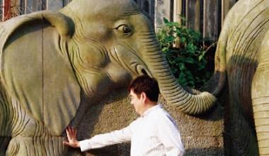 ▲因為L u k e愛大象,象山登山口曾是全家最愛去的地方,L u k e去世後,黑立言再也沒有踏入,直到這次拍照。