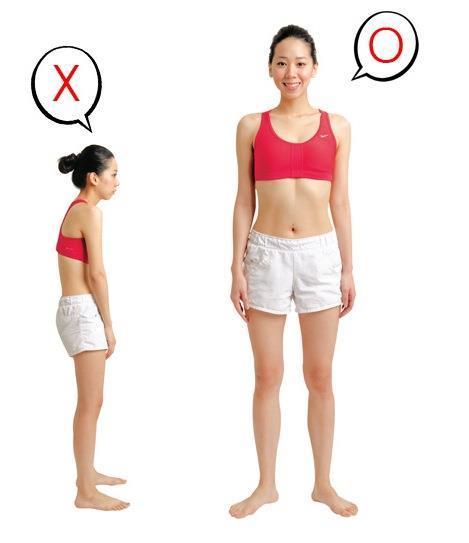 (轉載)醫生背書:每天拉筋操3分鐘 3個月瘦10公斤