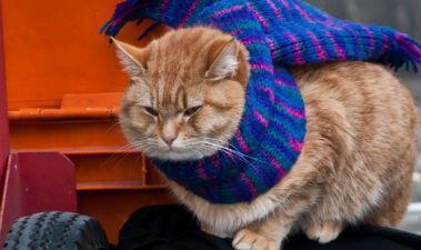 當只有一個暖暖包,你要放哪裡?