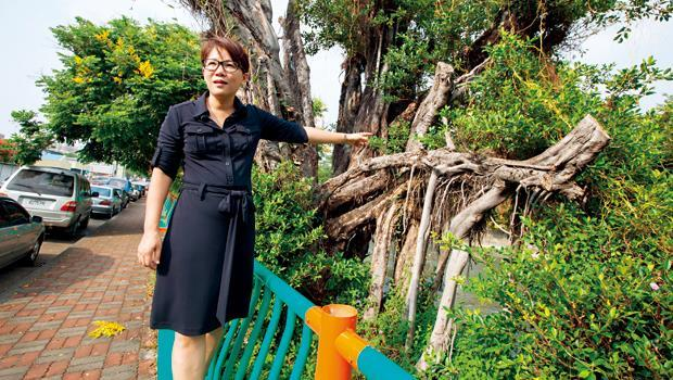 臉書人氣王張美惠從鑽研烹飪的貴婦,變成跑遍全台挺護樹的社運家,支持她的粉絲超過63,800人。