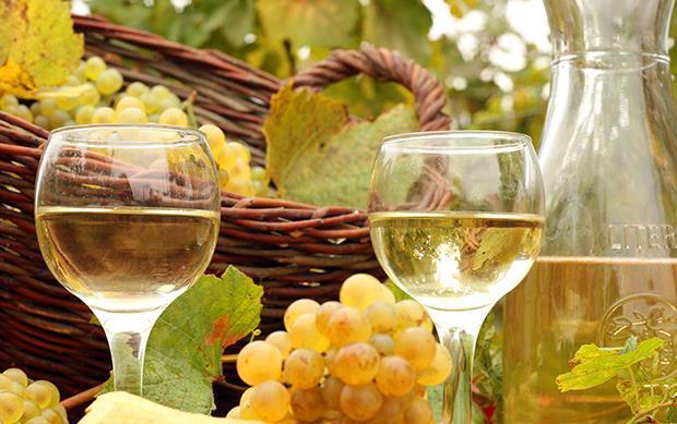 不管你家年菜吃什麼  這五款葡萄酒都能搞定