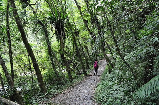 週末小旅行》[宜蘭大同].松羅國家步道
