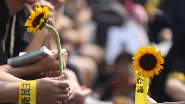 太陽花學運一周年,最該學會的一件事:「你」沒有那麼重要