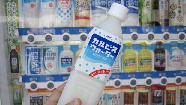 日本國民飲料「可爾必思」的原點,竟來自中國內蒙古