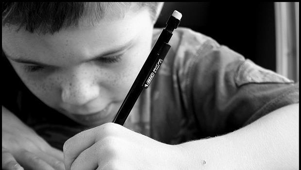 選擇職業不是一個蘿蔔一個坑》5個理由,別再叫小孩寫「我的志向」了
