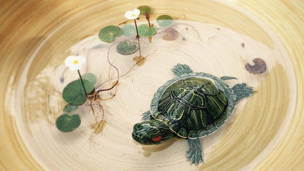 有人跟我一樣看不出烏龜是假的嗎?新加坡藝術家的「3D畫作」,已經超越藝術了