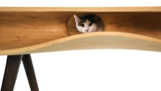 貓奴看了都會想買!拯救你家沙發,木製貓桌讓喵星人鑽不停