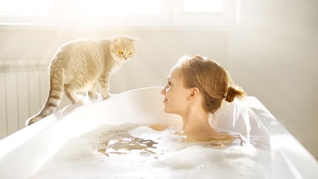 有影片》日本這款浴缸內建「腳踏車」,邊泡澡還能運動