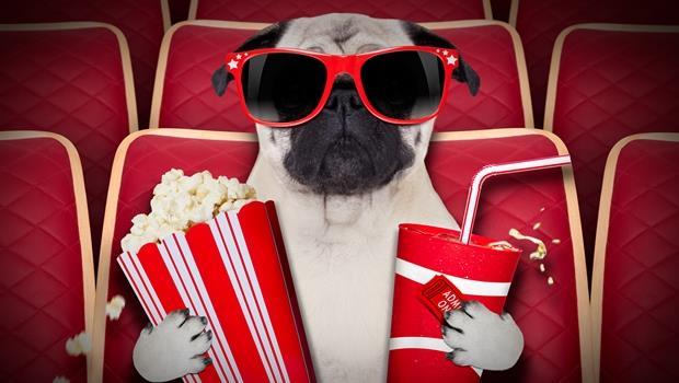 第一名不是超級英雄電影!2016下半年,網友最期待的十部電影是...