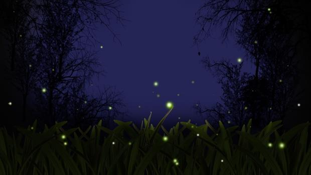 這幾個地方,一年四季都看得到螢火蟲!網友推薦,全台10大熱門賞「螢」地點