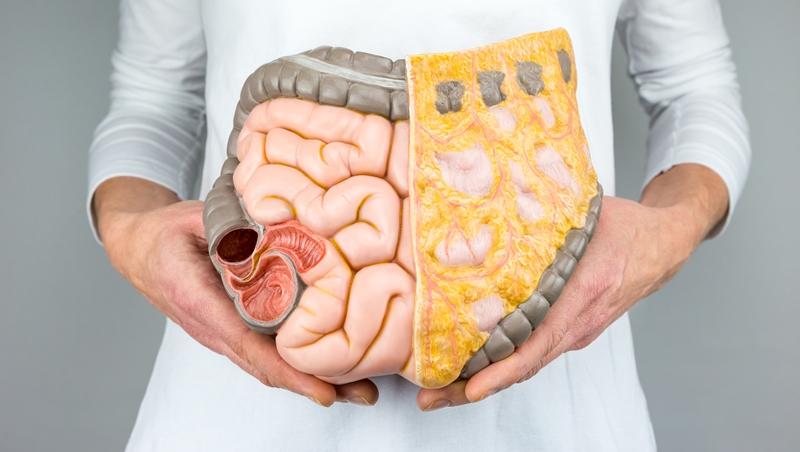 在家就能檢查、檢體保持常溫也OK!日本新技術,檢查腸道細菌就能驗出肥胖、腸道年齡及大腸癌