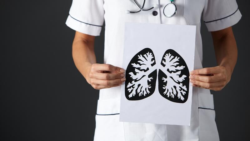重大發現!動物體內的血小板有一半生成於肺臟,且肺臟細胞可修復受損骨髓