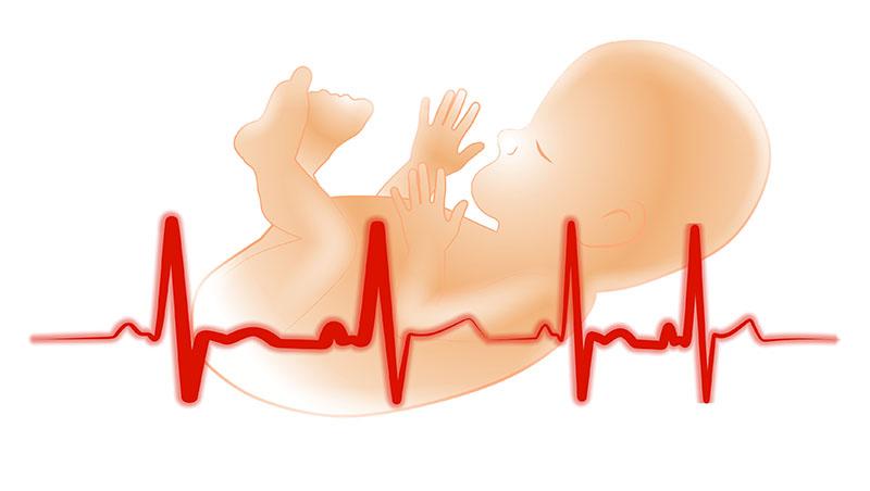 胎內記憶是真的!日本名醫:「每3個寶寶 就有1個保有胎內記憶!」