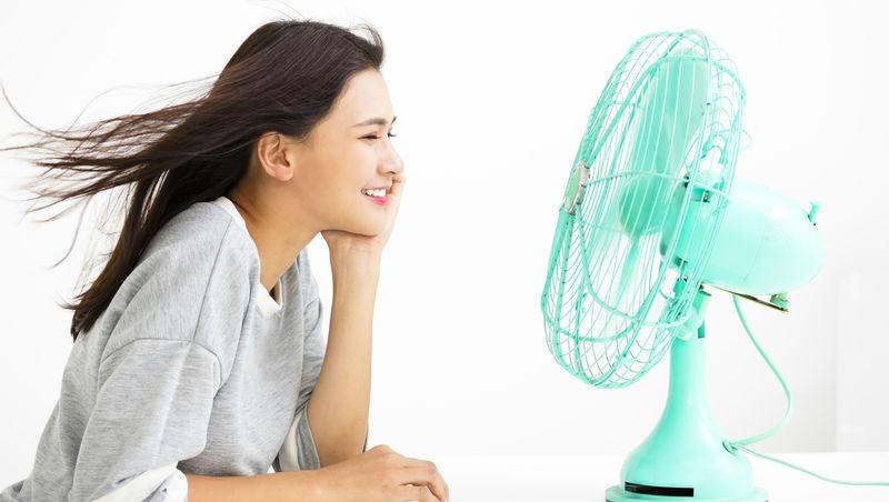 吹冷氣怕感冒、又耗電!這台電扇號稱「吹著舒服的風進入夢鄉」,售價超過1萬還是賣到缺貨
