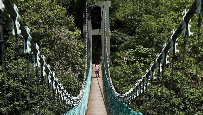 山風一號吊橋橫跨拉庫拉庫溪支流深谷,台灣黑熊在此山谷出沒。