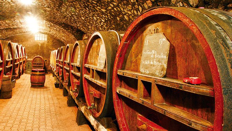 傳統的薄酒萊紅酒大多在大型的橡木酒槽中進行培養,很少採用小型的橡木桶,能保留更純粹的果香。