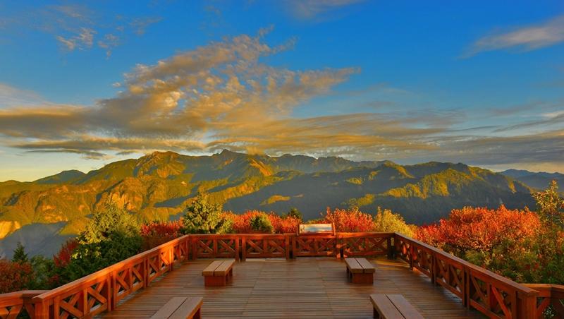 賞楓季來了!不用特地飛日本、韓國...台灣3大賞楓熱門景點,還能看日出、採蜜蘋果
