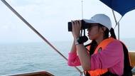 與風同行出任務! 想成為「鯨豚觀察員」須具備哪些條件?養成計畫公開