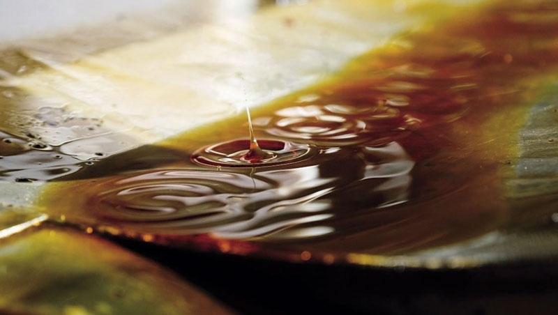 alive714_138_利用重量把芝麻餅裡的油榨出,榨油率可達35%至40%。經過冷壓、沉澱的黑芝麻油,滴滴香醇。_高大鈞