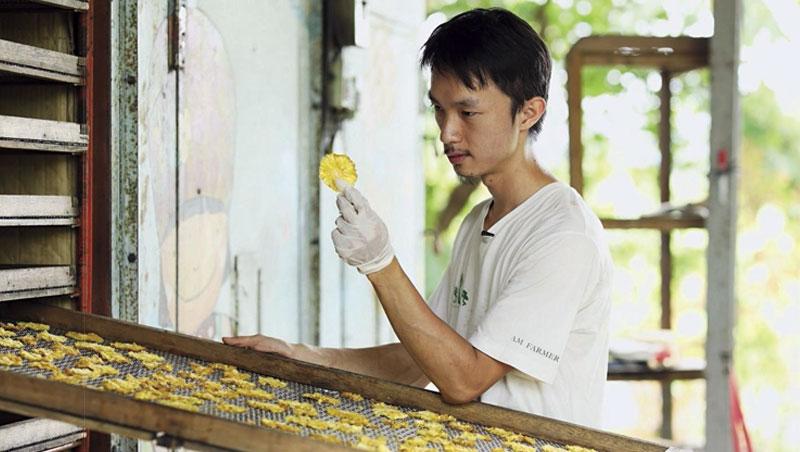 仔細檢查每片鳳梨乾,是很重要的工序。