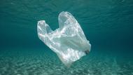 塑膠袋的誕生,竟然是為了環保?發明家之子還原發明初衷