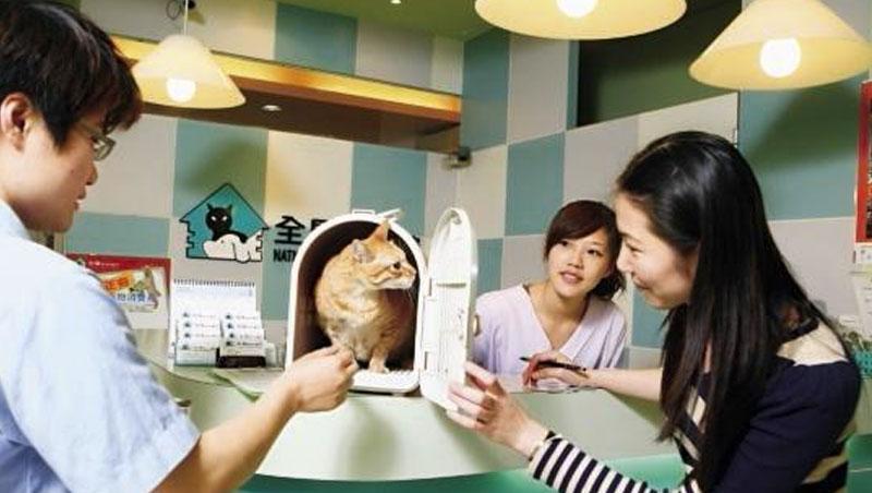台灣平均每3.4人就有1人養貓或狗,一旦生病開刀,費用動輒上看數萬元,加上美容、寄宿等,形成龐大產業鏈。