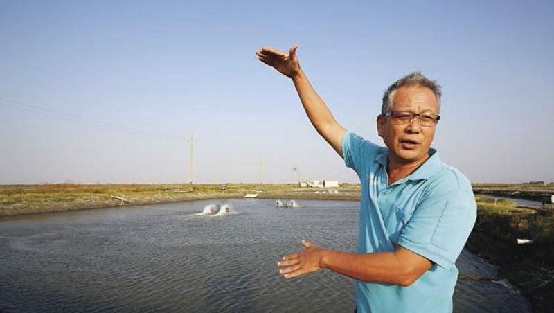 養殖經驗逾30年的七股漁民楊惠欽,站在自己的魚塭前比畫著,以後太陽能板蓋起來,會延伸到水面上,屆時可能不利曬坪,也影響收成的動線。
