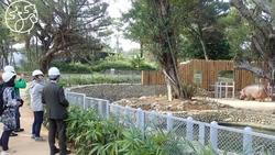 新竹動物園重生》排2小時才能看的10大驚喜,背後有一封日本女孩的情書