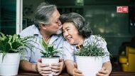 爺奶也要戀愛!不想「一個人老」,日本熟齡婚介所正夯