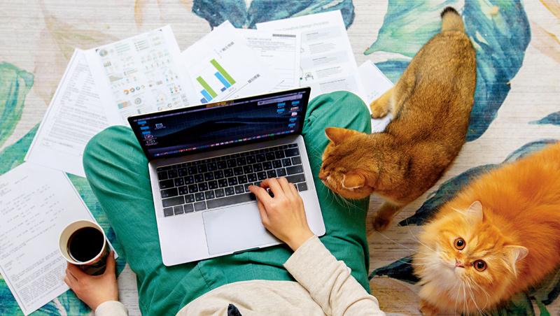 遠距工作容易受到寵物、親友等干擾,因此如1倍何提升專注力、自律工作,也成了一種新商機。