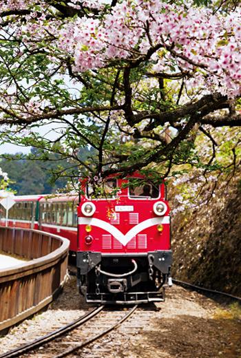 阿里山森林鐵路是台灣最重要的林業文化景觀。