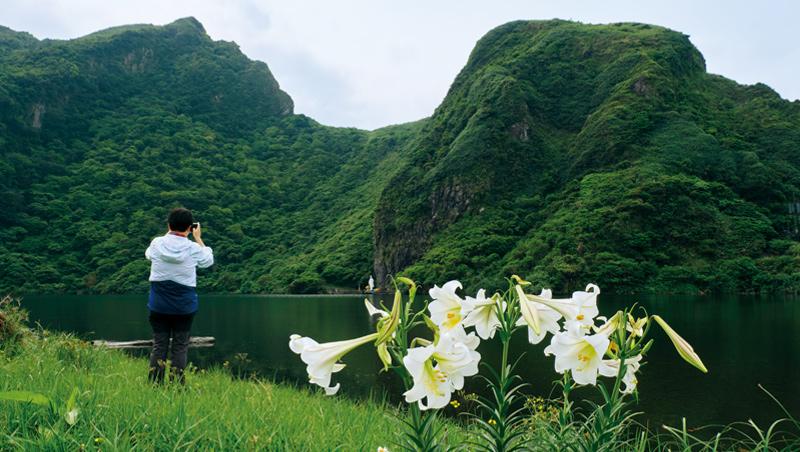 漫步在龜尾湖畔,是欣賞百合花的最佳地點,隨意拍張照片都能捕捉到島上獨特的美感。