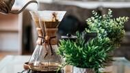 地表咖啡因含量最高咖啡!前美體小舖總經理創業,打造提神又不苦澀的飲料
