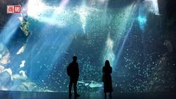 Xpark獨家開箱!日本八景島如何用五感體驗,在台發動水族館革命?