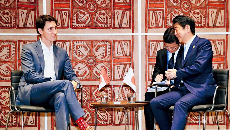 加拿大總理杜魯道(左)善用「襪子外交」,他的襪子選用大膽花色,和日本首相安倍晉三(右)的素色襪子形成鮮明對比。