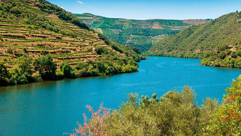葡萄牙上杜羅河釀酒區是有機演變的文化景觀,反映了人類釀酒技術、社會及經濟的長期演化。