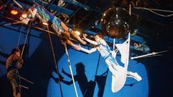 日本版「太陽馬戲團」,一個員工都沒裁又再復出!118歲企業的暖心經營哲學