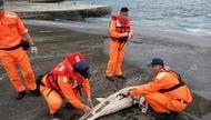 廢棄漁網每年「纏死」30萬隻鯨豚!漁具實名制明年7月強制執行