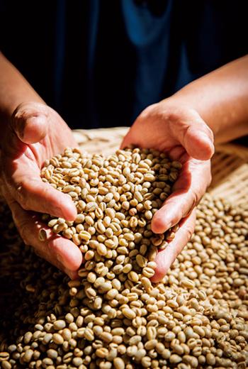 帶殼的生豆通常在烘焙前才會去殼,以確保咖啡豆的新鮮,避免受潮。
