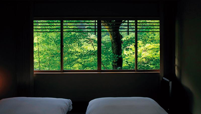 京都虹夕諾雅旅店的長型窗戶,框住窗外的綠葉扶疏,可欣賞四季變化。