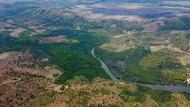 人類壓力步步進逼 全球13年間荒野損失面積相當於墨西哥