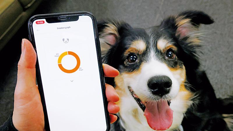 韓國新創公司開發「人工智慧項圈」,透過1萬個狗吠聲樣本,讀懂狗狗5種情緒,此外還能追蹤狗狗的行動,計算牠消耗的卡路里。