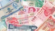 多益時事通》台幣屢創新高,外匯、貨幣的英文該怎麼說?
