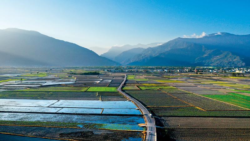 當全台農地面積下滑,池上農地不僅沒變少,近10年休耕閒置率更從約5%降至1%以下。逾8千位居民齊心守護、留下良田美景是關鍵。