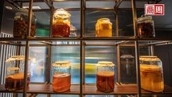 康普茶新食尚》純飲X佐餐X調酒 康普茶的101種迷人風貌