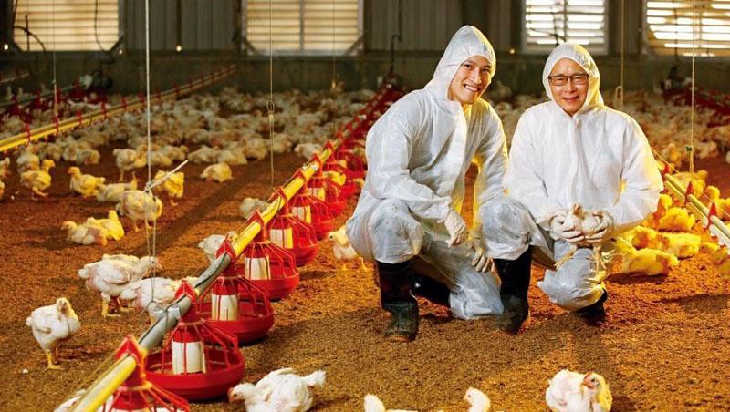 2016年成立十八養場品牌,由養雞老手陳明尹(右)管農場,鑽研爬蟲類的博士蔡俊興(左)做品牌行銷,5年就突破年營收1億元