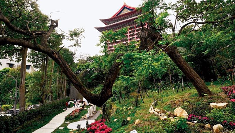從東密道出口,通往一般旅客無法任意進入的秘境花園,其中苦楝樹的造型獨特