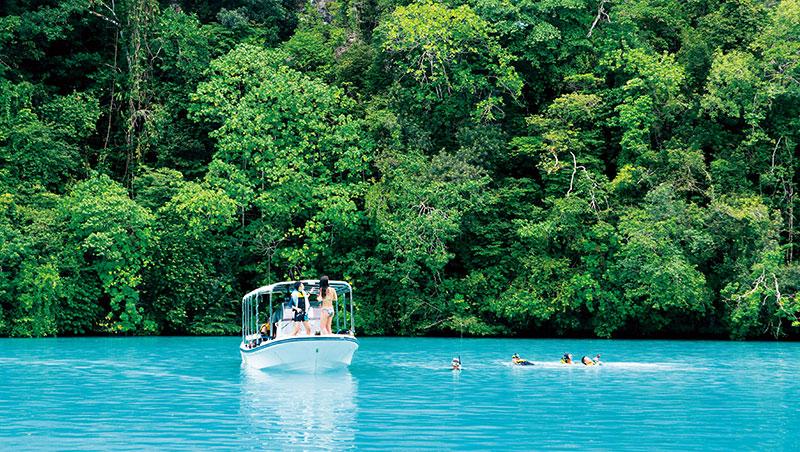 疫情前帛琉景點牛奶湖到處都是遊客,疫情後因人數控管,旅客可享受獨有的靜謐跟天然環境。