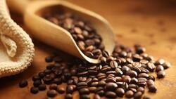 一顆咖啡豆的「物盡其用」:公車燃料、眼鏡鏡框都從咖啡來!怎麼做的?